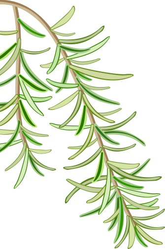 Pin Leaves 2